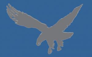 eagle cad